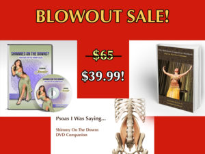 bellydance gift idea holiday blowout sale